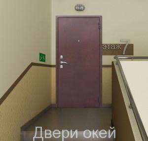 stalnye-dveri-snaruzhi-evrostandart-5