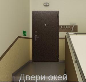 stalnye-dveri-snaruzhi-evrostandart-2