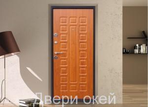 vid-dveri-iznutri-evrostandart-4