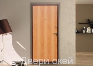 vid-dveri-iznutri-evrostandart-7