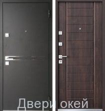 metallicheskie-dveri-novinka-1