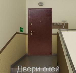 stalnye-dveri-evrostandart-9