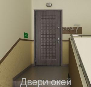 stalnye-dveri-novinka-13