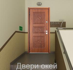 stalnye-dveri-novinka-15