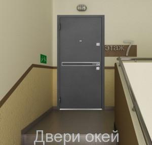 stalnye-dveri-novinka-4