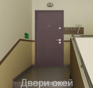 stalnye-dveri-novinka-5