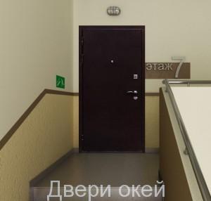 stalnye-dveri-snaruzhi-evrostandart-11