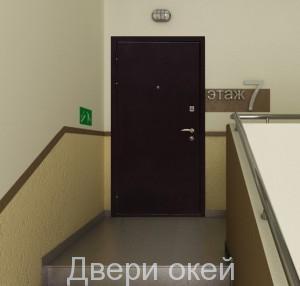 stalnye-dveri-snaruzhi-evrostandart-12