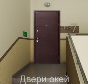 stalnye-dveri-snaruzhi-evrostandart-19