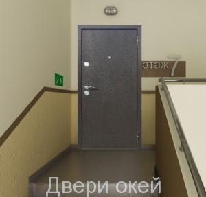 stalnye-dveri-snaruzhi-evrostandart-4