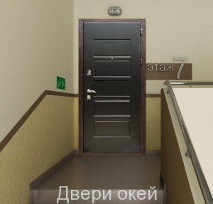 Стальные-двери-снаружи