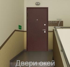 stalnye-dveri-snaruzhi-r2