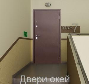 stalnye-dveri-snaruzhi-r7