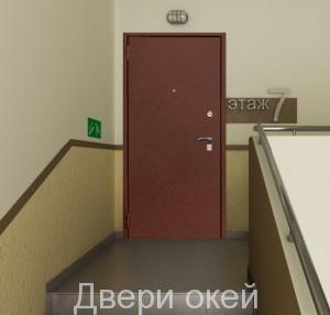 stalnye-dveri-snaruzhi-r8