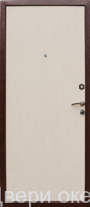 zheleznye-dveri-smennye-paneli-1