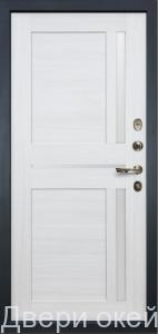 zheleznye-dveri-smennye-paneli-47