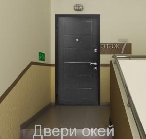 stalnye-dveri-snaruzhi-evrostandart-22