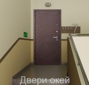 stalnye-dveri-snaruzhi-r9
