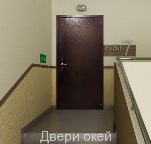 stalnye-dveri-snaruzhi-z-3-1