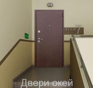 stalnye-dveri-snaruzhi-z7