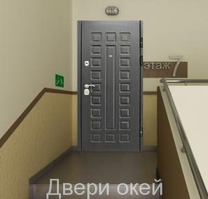 stalnye-dveri-snaruzhi-z9