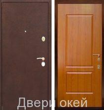 metallicheskie-dveri-r10