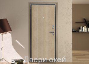 stalnye-dveri-P-11
