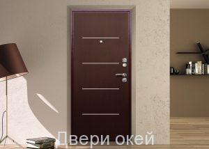 stalnye-dveri-P-12