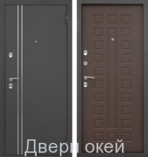 metallicheskie-dveri-z-8