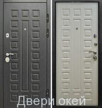 metallicheskie-dveri-r-13